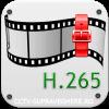 Compresie H.265
